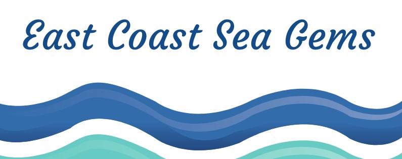East Coast Sea Gems: An obsession with the Sea